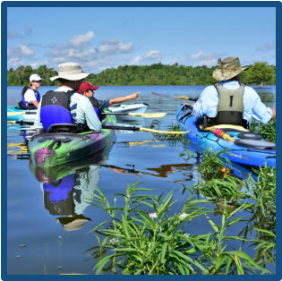 Paddle Santee, Lake Marion for wildlife nature tours with lowcountry history